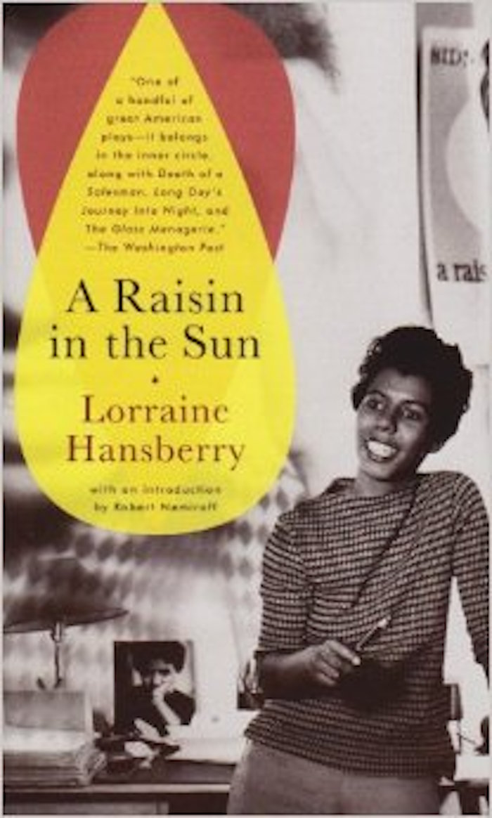 A Raisin in the Sun Summary and Study Guide